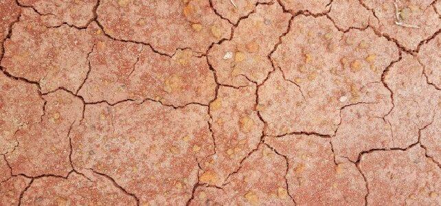 Economia Circular i Canvi Climàtic